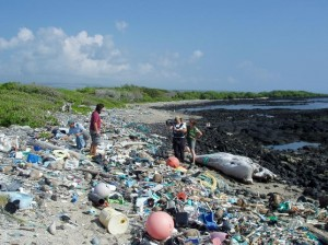 garbage on the beach, plastic washup